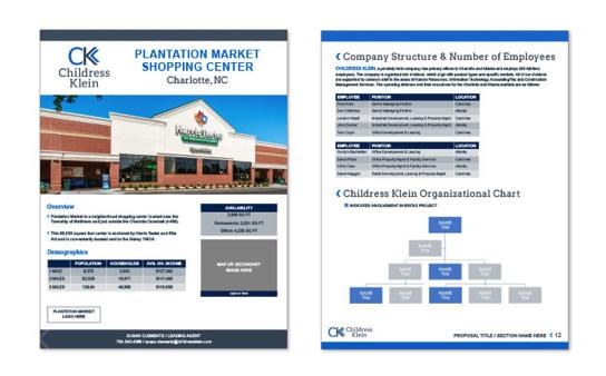 ck-property-flyer