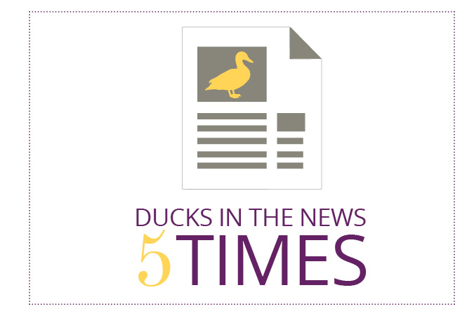 Yellow Duck Marketing In The News